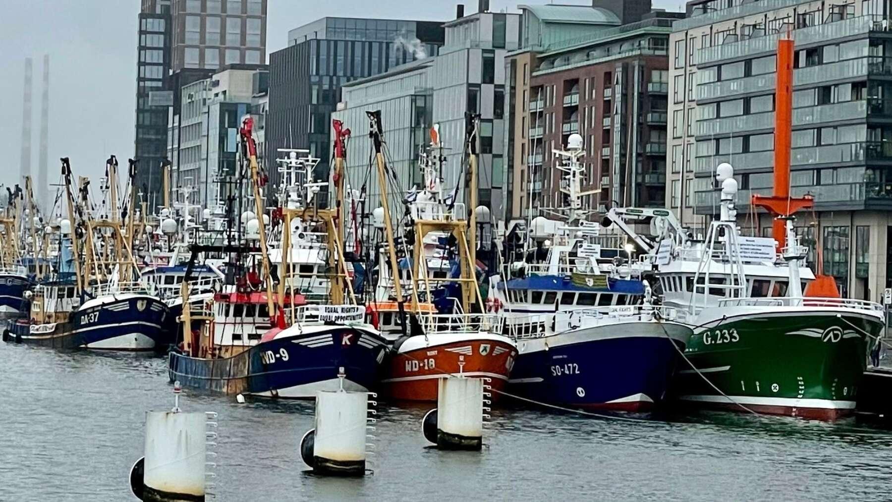 Fishing-Protest.jpg