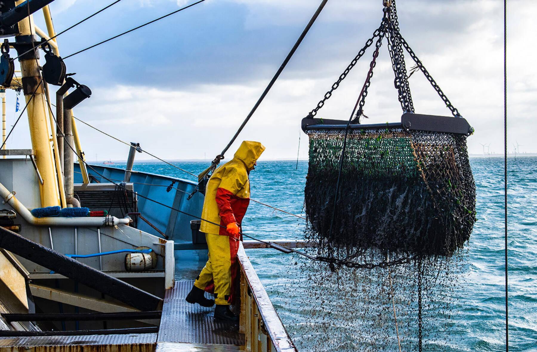 Fisherman from Kilmore Quai working for Atlantis