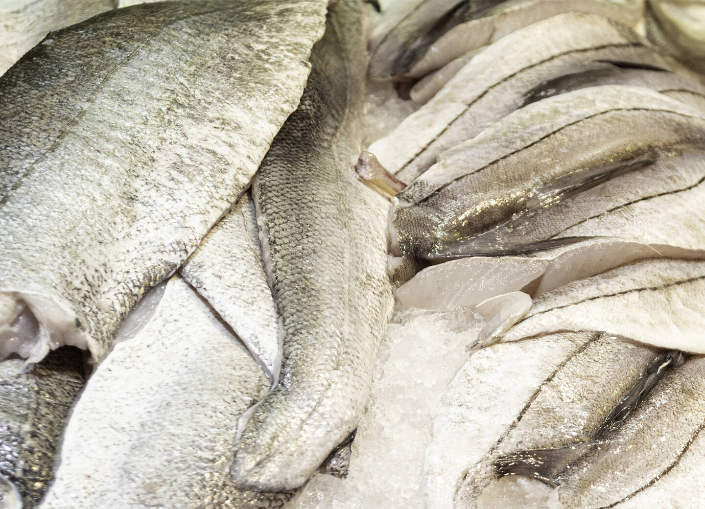 Atlantis Sustainably Sourced Seafood