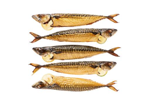 154 Buckling Mackerel
