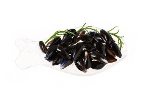 AT1204 - Irish Mussels in Shell