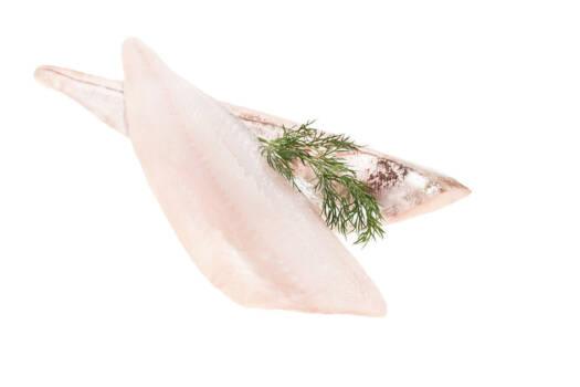 AT303 - Fresh Wild Irish Haddock Fillets