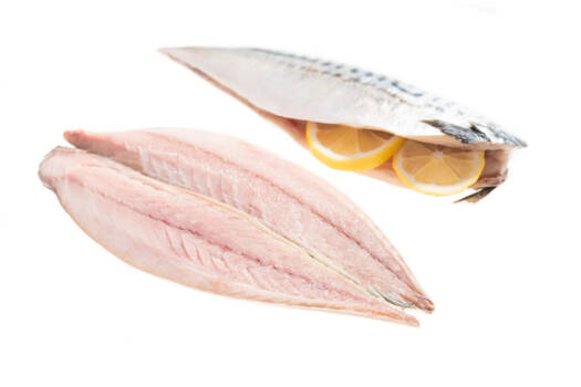 AT5003 Mackerel Fillet