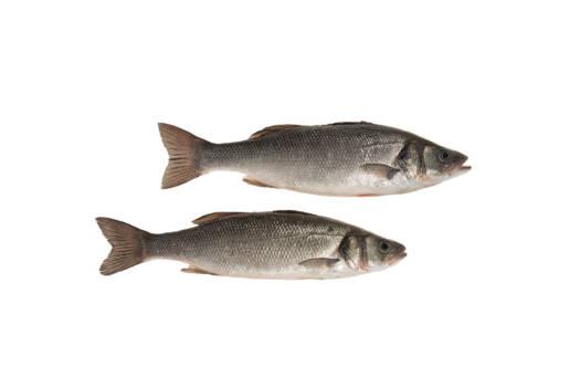 AT601 - Whole Fresh Sea Bass
