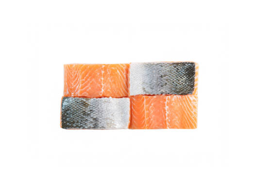 Salmon Portion family pack