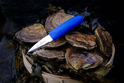 Kelly oysters knife