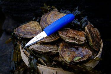 kelly-oysters-knife.jpg