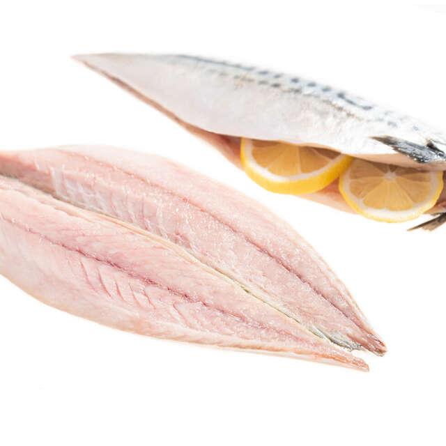 Fresh Wild Irish Mackerel Fillets