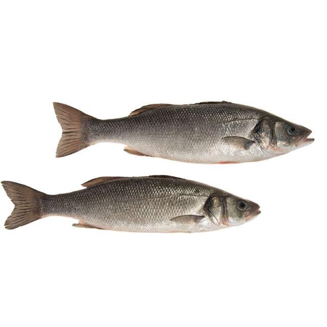 Whole Fresh Sea Bass