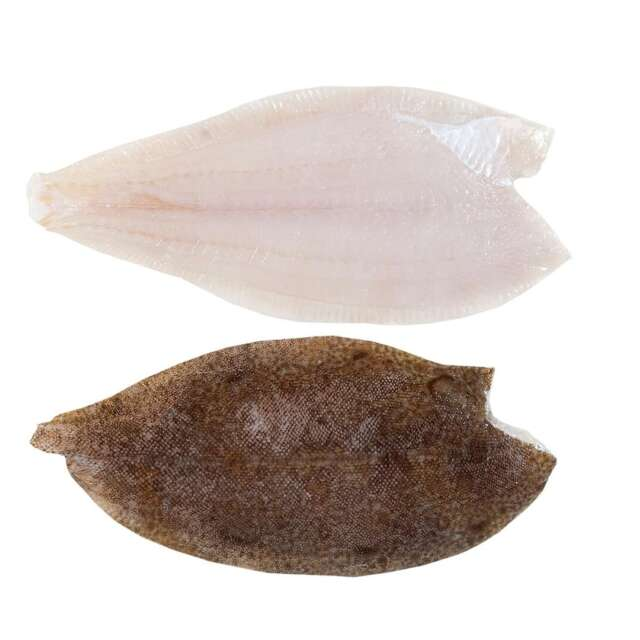 Fresh Wild Irish Lemon Sole Fillets Family Pack 2kg