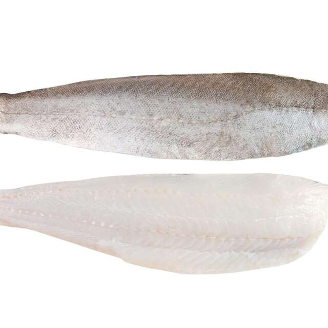 Fresh Wild Irish Whiting Fillets